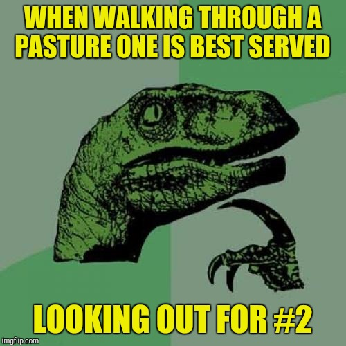 When peeing into the wind one is best served looking out for #1 | WHEN WALKING THROUGH A PASTURE ONE IS BEST SERVED LOOKING OUT FOR #2 | image tagged in memes,philosoraptor,2,1 | made w/ Imgflip meme maker