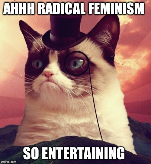 Grumpy Cat Top Hat | AHHH RADICAL FEMINISM SO ENTERTAINING | image tagged in memes,grumpy cat top hat,grumpy cat | made w/ Imgflip meme maker