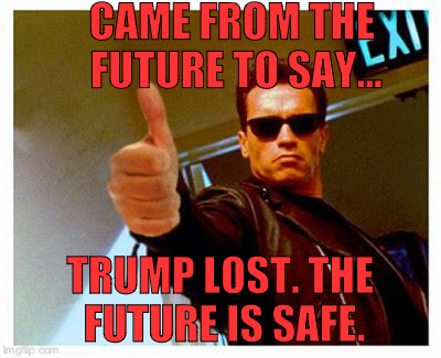 Arnold won't be voting for the douche bag trump |  CAME FROM THE FUTURE TO SAY... TRUMP LOST. THE FUTURE IS SAFE. | image tagged in terminator thumbs up | made w/ Imgflip meme maker