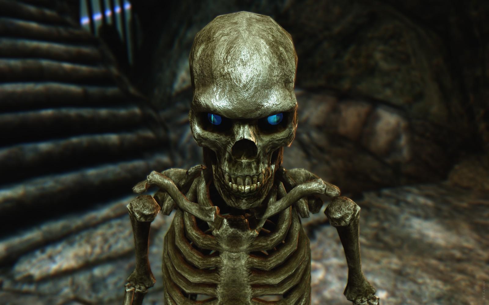 Macromedia Projector Skeleton Inc - Free