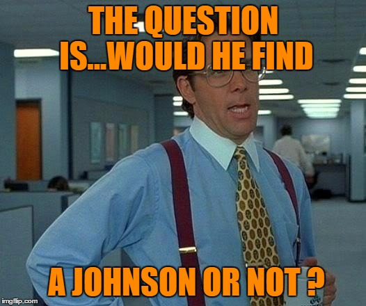 That Would Be Great Meme | THE QUESTION IS...WOULD HE FIND A JOHNSON OR NOT ? | image tagged in memes,that would be great | made w/ Imgflip meme maker