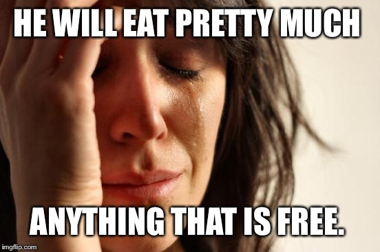 First World Problems Meme | HE WILL EAT PRETTY MUCH ANYTHING THAT IS FREE. | image tagged in memes,first world problems | made w/ Imgflip meme maker
