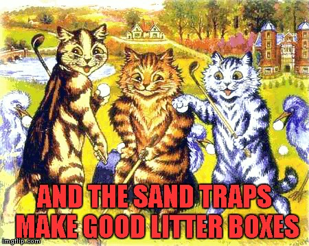 AND THE SAND TRAPS MAKE GOOD LITTER BOXES | made w/ Imgflip meme maker