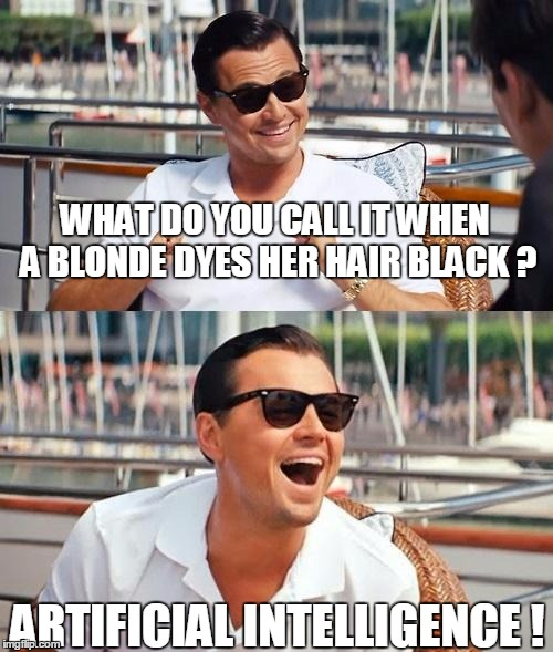 I Bimbot | WHAT DO YOU CALL IT WHEN A BLONDE DYES HER HAIR BLACK ? ARTIFICIAL INTELLIGENCE ! | image tagged in memes,leonardo dicaprio wolf of wall street | made w/ Imgflip meme maker