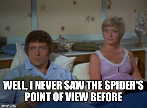 WELL, I NEVER SAW THE SPIDER'S POINT OF VIEW BEFORE | made w/ Imgflip meme maker