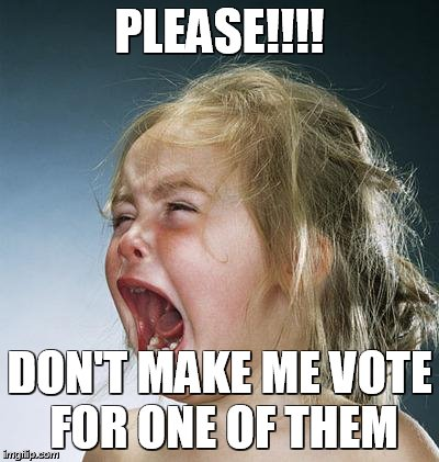 little girl screaming | PLEASE!!!! DON'T MAKE ME VOTE FOR ONE OF THEM | image tagged in little girl screaming | made w/ Imgflip meme maker