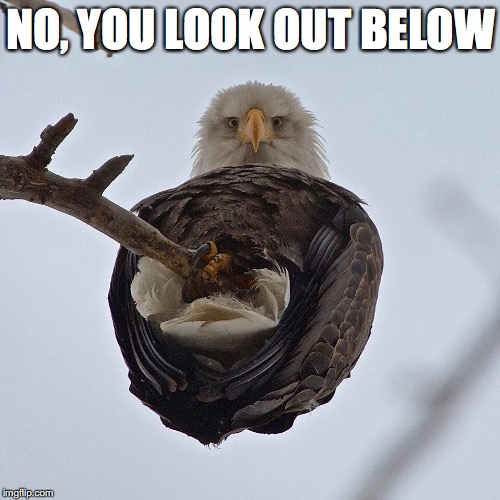 NO, YOU LOOK OUT BELOW | made w/ Imgflip meme maker