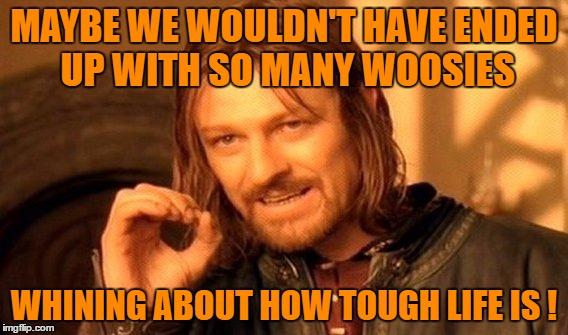One Does Not Simply Meme | MAYBE WE WOULDN'T HAVE ENDED UP WITH SO MANY WOOSIES WHINING ABOUT HOW TOUGH LIFE IS ! | image tagged in memes,one does not simply | made w/ Imgflip meme maker
