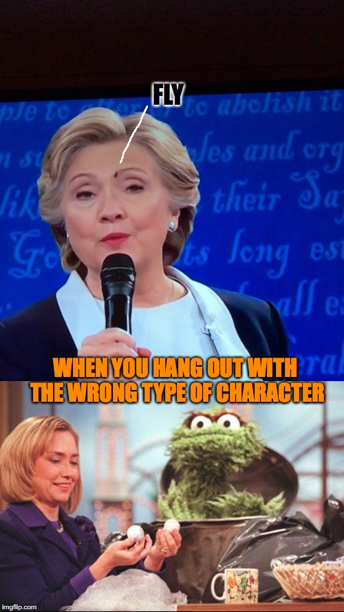 The Fly | FLY WHEN YOU HANG OUT WITH THE WRONG TYPE OF CHARACTER | image tagged in hillary clinton 2016,presidential debate | made w/ Imgflip meme maker