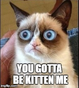 Grumpy Cat Shocked | YOU GOTTA BE KITTEN ME | image tagged in grumpy cat shocked | made w/ Imgflip meme maker