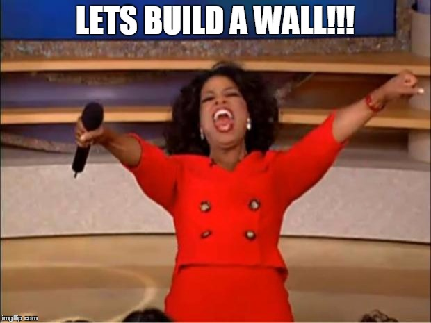 Oprah You Get A | LETS BUILD A WALL!!! | image tagged in memes,oprah you get a | made w/ Imgflip meme maker