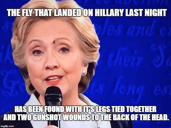 Verdict: Suicide. | THE FLY THAT LANDED ON HILLARY LAST NIGHT HAS BEEN FOUND WITH IT'S LEGS TIED TOGETHER AND TWO GUNSHOT WOUNDS TO THE BACK OF THE HEAD. | image tagged in another one bites the dust | made w/ Imgflip meme maker