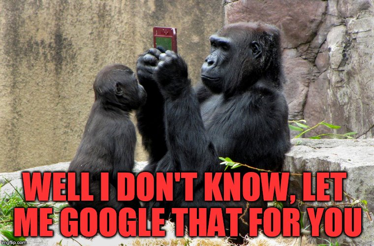 WELL I DON'T KNOW, LET ME GOOGLE THAT FOR YOU | made w/ Imgflip meme maker
