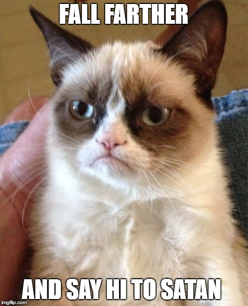 Grumpy Cat Meme | FALL FARTHER AND SAY HI TO SATAN | image tagged in memes,grumpy cat | made w/ Imgflip meme maker