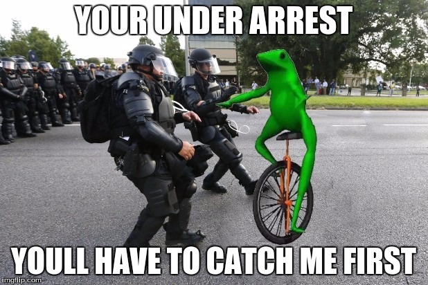 datboi | YOUR UNDER ARREST YOULL HAVE TO CATCH ME FIRST | image tagged in datboi | made w/ Imgflip meme maker