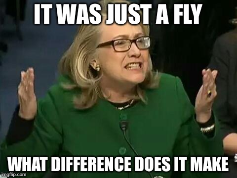 IT WAS JUST A FLY WHAT DIFFERENCE DOES IT MAKE | made w/ Imgflip meme maker