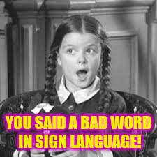 YOU SAID A BAD WORD IN SIGN LANGUAGE! | made w/ Imgflip meme maker