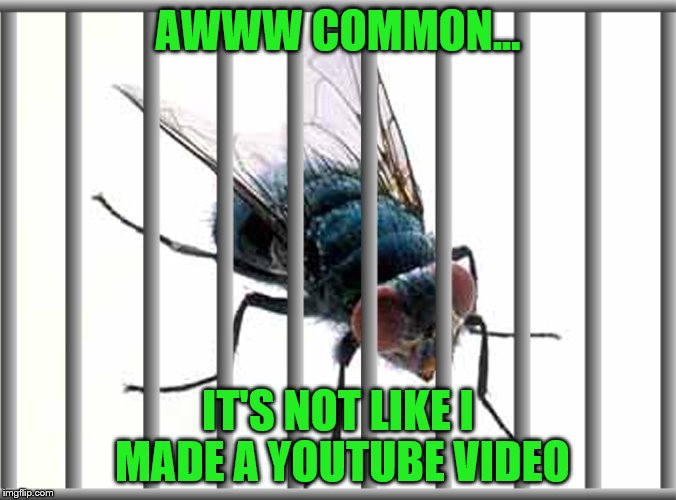 AWWW COMMON... IT'S NOT LIKE I MADE A YOUTUBE VIDEO | made w/ Imgflip meme maker