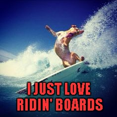 I JUST LOVE RIDIN' BOARDS | made w/ Imgflip meme maker