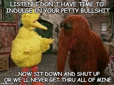 Big Bird And Snuffy | LISTEN! I DON'T HAVE TIME TO INDULGE IN YOUR PETTY BULLSHIT ...NOW SIT DOWN AND SHUT UP OR WE'LL NEVER GET THRU ALL OF MINE | image tagged in memes,big bird and snuffy | made w/ Imgflip meme maker