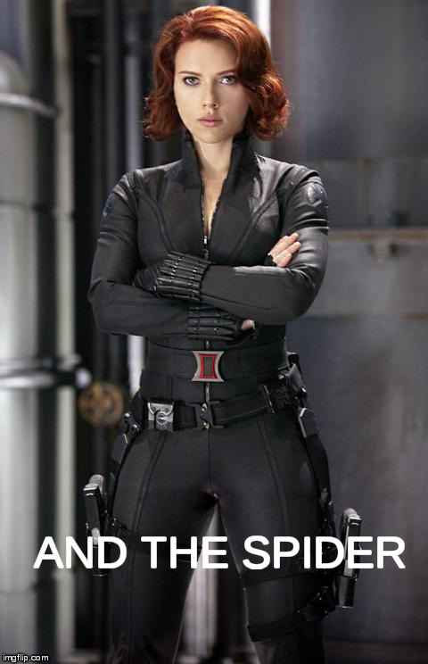 black widow | AND THE SPIDER | image tagged in black widow | made w/ Imgflip meme maker