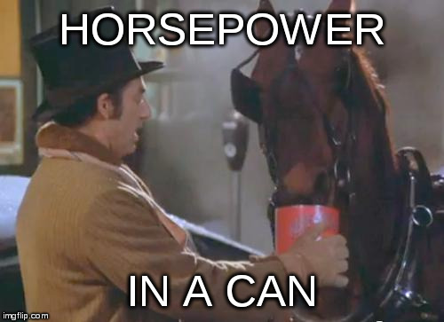 Manga Rusty, its a long walk around the park | HORSEPOWER IN A CAN | image tagged in beanareno | made w/ Imgflip meme maker