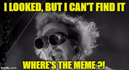 I LOOKED, BUT I CAN'T FIND IT WHERE'S THE MEME ?! | made w/ Imgflip meme maker