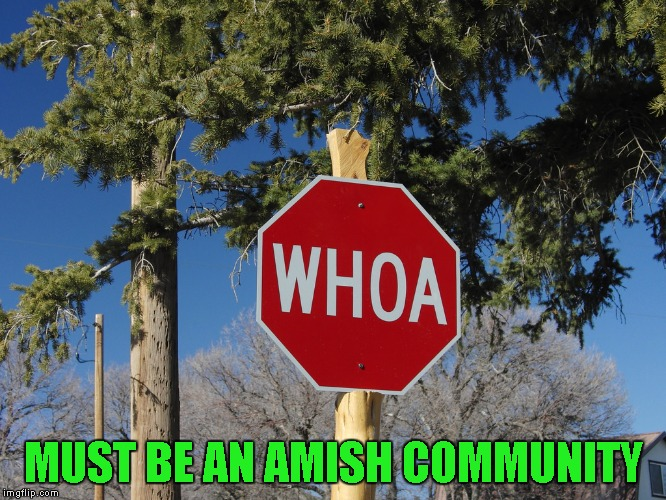 Credit to gizmomeme for giving me the idea for this one. | MUST BE AN AMISH COMMUNITY | image tagged in whoa sign,memes,funny signs,stop,funny,amish | made w/ Imgflip meme maker