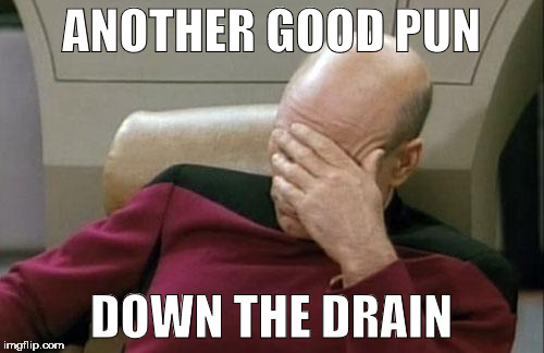 Captain Picard Facepalm Meme | ANOTHER GOOD PUN DOWN THE DRAIN | image tagged in memes,captain picard facepalm | made w/ Imgflip meme maker