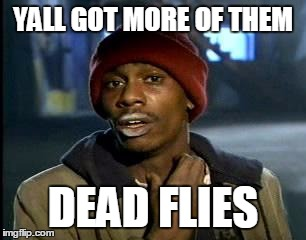 Y'all Got Any More Of That Meme | YALL GOT MORE OF THEM DEAD FLIES | image tagged in memes,yall got any more of | made w/ Imgflip meme maker