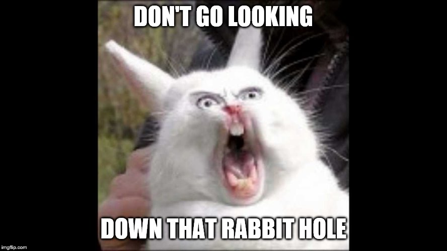 DON'T GO LOOKING DOWN THAT RABBIT HOLE | made w/ Imgflip meme maker