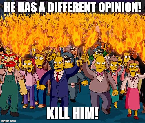 The internet today | HE HAS A DIFFERENT OPINION! KILL HIM! | image tagged in angry mob | made w/ Imgflip meme maker