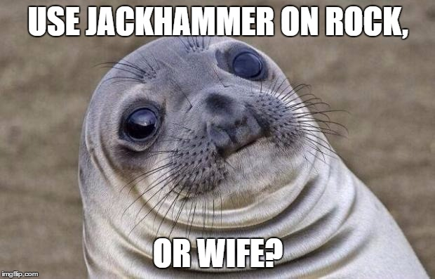 Awkward Moment Sealion Meme | USE JACKHAMMER ON ROCK, OR WIFE? | image tagged in memes,awkward moment sealion | made w/ Imgflip meme maker