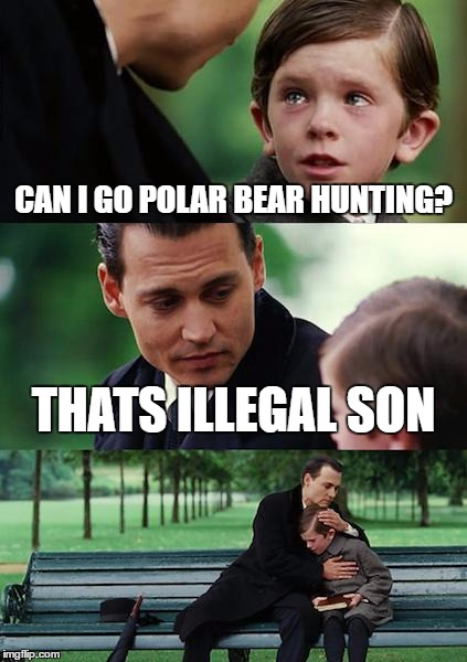 Finding Neverland Meme | CAN I GO POLAR BEAR HUNTING? THATS ILLEGAL SON | image tagged in memes,finding neverland | made w/ Imgflip meme maker