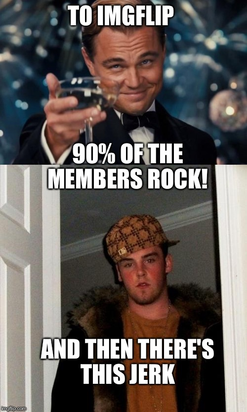 Cheers to those who keep on scrolling instead of being a jerk. | TO IMGFLIP 90% OF THE MEMBERS ROCK! AND THEN THERE'S THIS JERK | image tagged in why you gotta be so mean,lynch1979,get a life,leonardo dicaprio cheers,scumbag steve | made w/ Imgflip meme maker