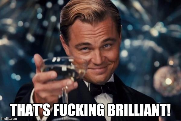 Leonardo Dicaprio Cheers Meme | THAT'S F**KING BRILLIANT! | image tagged in memes,leonardo dicaprio cheers | made w/ Imgflip meme maker
