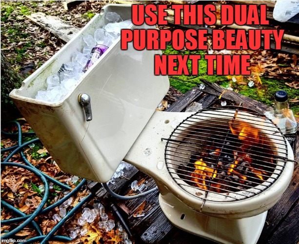 Pinterest Worthy Autumn Party Cookout Center | USE THIS DUAL PURPOSE BEAUTY NEXT TIME | image tagged in memes,outdoor parties,bbqs,diy fails,toilets | made w/ Imgflip meme maker