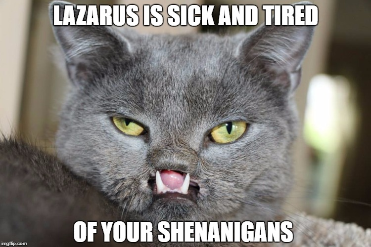 LAZARUS IS SICK AND TIRED; OF YOUR SHENANIGANS | image tagged in lazarus | made w/ Imgflip meme maker