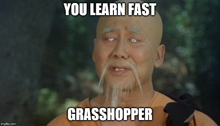 YOU LEARN FAST GRASSHOPPER | made w/ Imgflip meme maker