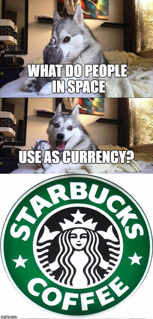 Credit goes to Tumblr |  WHAT DO PEOPLE IN SPACE; USE AS CURRENCY? | image tagged in memes,bad pun dog,tumblr,funny,starbucks,space | made w/ Imgflip meme maker