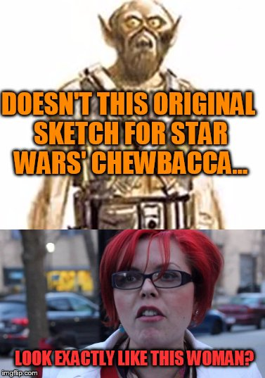#triggered over design choice |  DOESN'T THIS ORIGINAL SKETCH FOR STAR WARS' CHEWBACCA... LOOK EXACTLY LIKE THIS WOMAN? | image tagged in star wars,chewbacca,triggered,lookalike | made w/ Imgflip meme maker