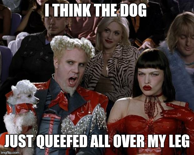 Mugatu So Hot Right Now Meme | I THINK THE DOG JUST QUEEFED ALL OVER MY LEG | image tagged in memes,mugatu so hot right now | made w/ Imgflip meme maker