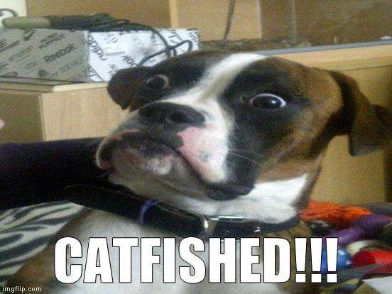 CATFISHED!!! | made w/ Imgflip meme maker