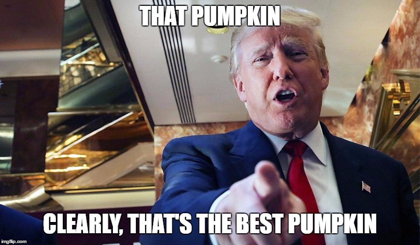 Trump Burn | THAT PUMPKIN CLEARLY, THAT'S THE BEST PUMPKIN | image tagged in trump burn | made w/ Imgflip meme maker