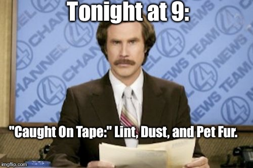 "Ron Burgundy Meme | Tonight at 9: ""Caught On Tape:"" Lint, Dust, and Pet Fur. 