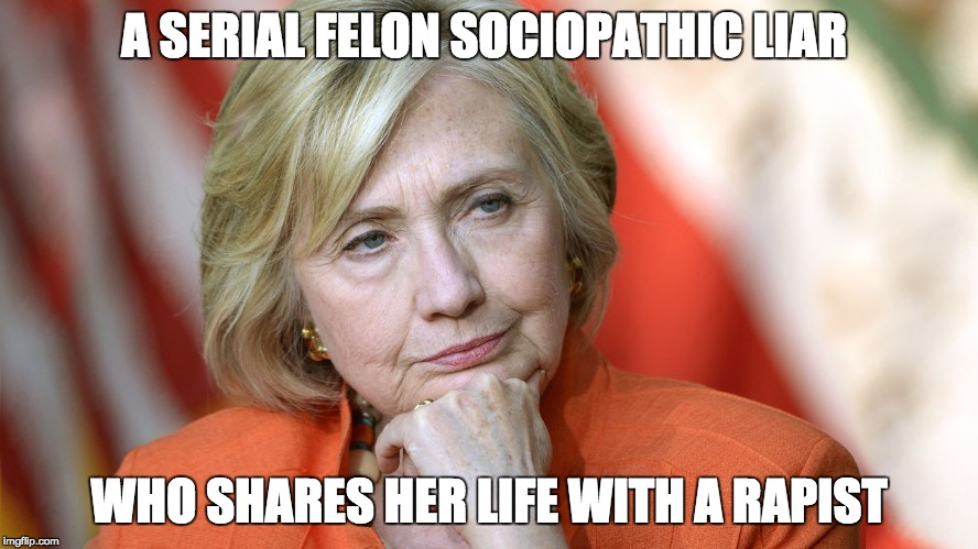 Hillary Disgusted | A SERIAL FELON SOCIOPATHIC LIAR WHO SHARES HER LIFE WITH A RAPIST | image tagged in hillary disgusted | made w/ Imgflip meme maker