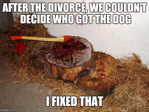 AFTER THE DIVORCE, WE COULDN'T DECIDE WHO GOT THE DOG I FIXED THAT | made w/ Imgflip meme maker