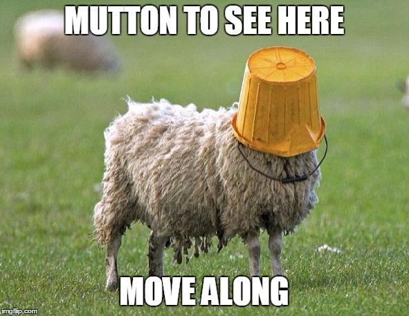 MUTTON TO SEE HERE MOVE ALONG | made w/ Imgflip meme maker