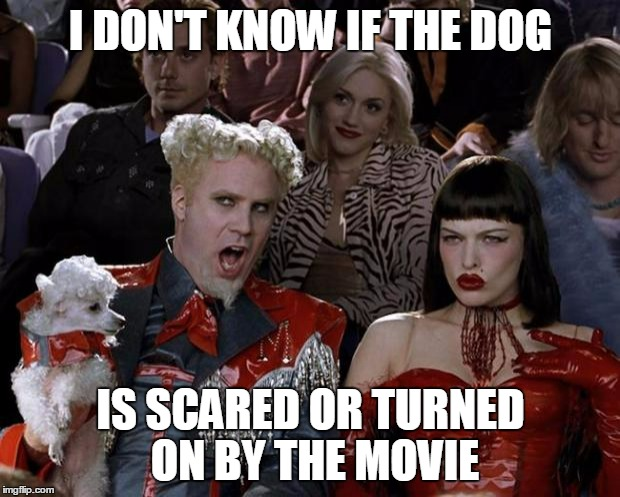 Mugatu So Hot Right Now Meme | I DON'T KNOW IF THE DOG IS SCARED OR TURNED ON BY THE MOVIE | image tagged in memes,mugatu so hot right now | made w/ Imgflip meme maker