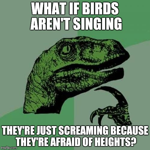 Poor Birds... | WHAT IF BIRDS AREN'T SINGING THEY'RE JUST SCREAMING BECAUSE THEY'RE AFRAID OF HEIGHTS? | image tagged in memes,philosoraptor,birds,good question,phobia | made w/ Imgflip meme maker